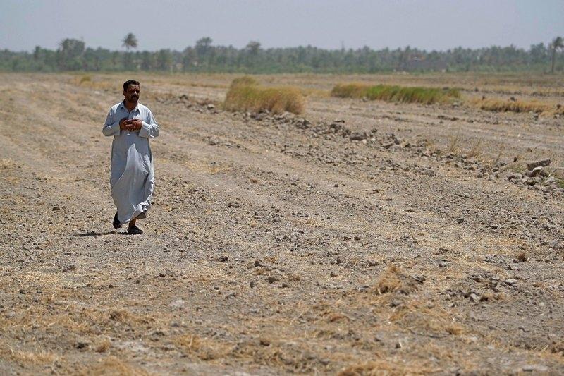As water crisis grows dire, Iraq bans farming summer crops
